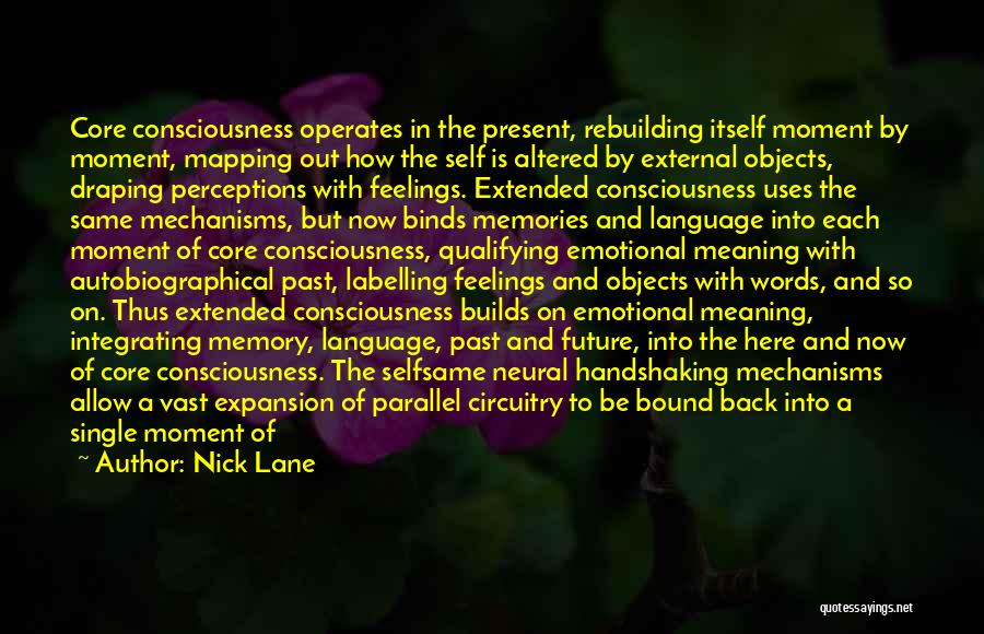 Nick Lane Quotes: Core Consciousness Operates In The Present, Rebuilding Itself Moment By Moment, Mapping Out How The Self Is Altered By External