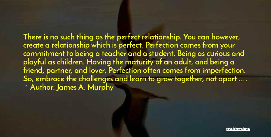 James A. Murphy Quotes: There Is No Such Thing As The Perfect Relationship. You Can However, Create A Relationship Which Is Perfect. Perfection Comes