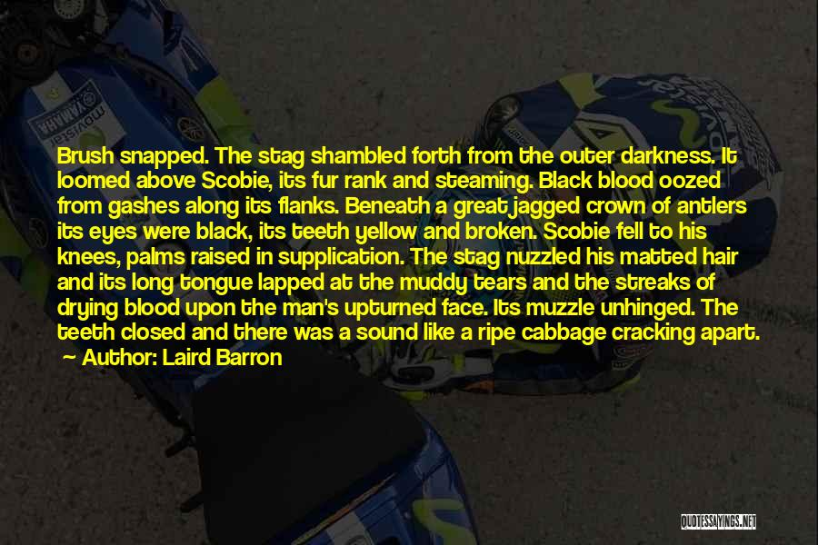 Laird Barron Quotes: Brush Snapped. The Stag Shambled Forth From The Outer Darkness. It Loomed Above Scobie, Its Fur Rank And Steaming. Black