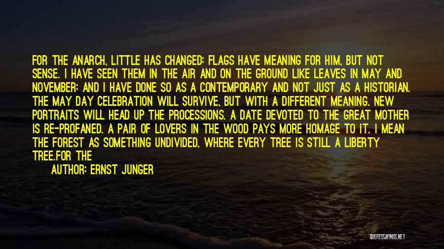 Ernst Junger Quotes: For The Anarch, Little Has Changed; Flags Have Meaning For Him, But Not Sense. I Have Seen Them In The
