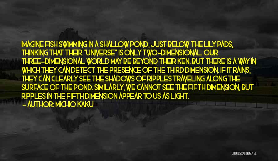 2 Dimensional Quotes By Michio Kaku