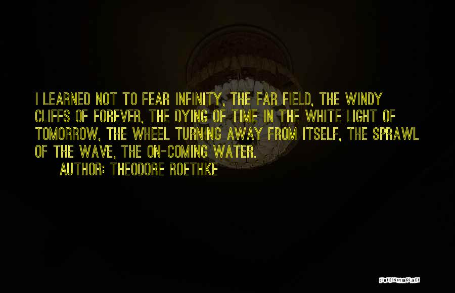 Theodore Roethke Quotes: I Learned Not To Fear Infinity, The Far Field, The Windy Cliffs Of Forever, The Dying Of Time In The