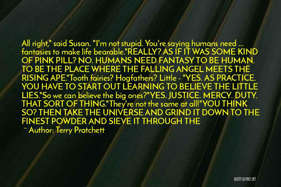 Terry Pratchett Quotes: All Right, Said Susan. I'm Not Stupid. You're Saying Humans Need ... Fantasies To Make Life Bearable.really? As If It