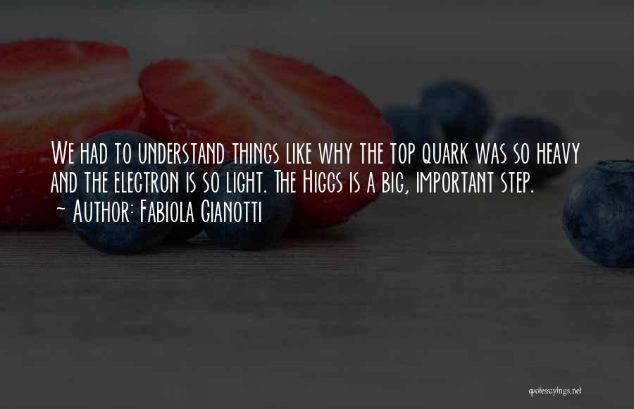 Fabiola Gianotti Quotes: We Had To Understand Things Like Why The Top Quark Was So Heavy And The Electron Is So Light. The