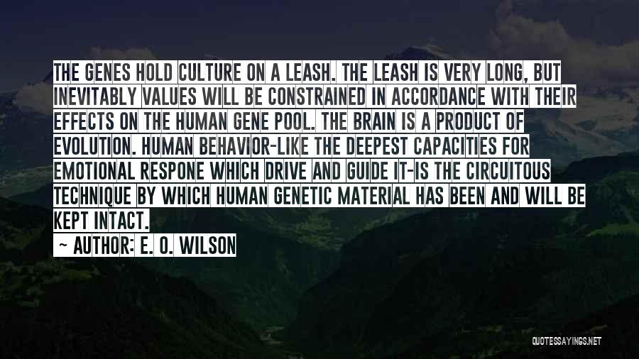 E. O. Wilson Quotes: The Genes Hold Culture On A Leash. The Leash Is Very Long, But Inevitably Values Will Be Constrained In Accordance