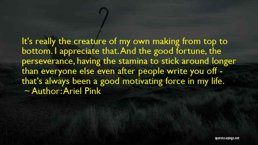 Ariel Pink Quotes: It's Really The Creature Of My Own Making From Top To Bottom. I Appreciate That. And The Good Fortune, The