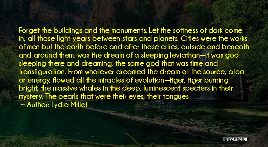 Lydia Millet Quotes: Forget The Buildings And The Monuments. Let The Softness Of Dark Come In, All Those Light-years Between Stars And Planets.