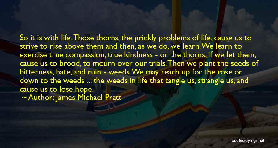 James Michael Pratt Quotes: So It Is With Life. Those Thorns, The Prickly Problems Of Life, Cause Us To Strive To Rise Above Them
