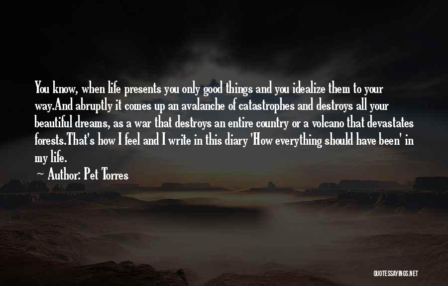 Pet Torres Quotes: You Know, When Life Presents You Only Good Things And You Idealize Them To Your Way.and Abruptly It Comes Up