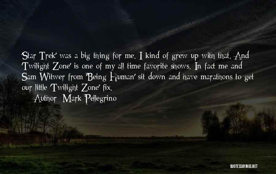 Mark Pellegrino Quotes: 'star Trek' Was A Big Thing For Me. I Kind Of Grew Up With That. And 'twilight Zone' Is One