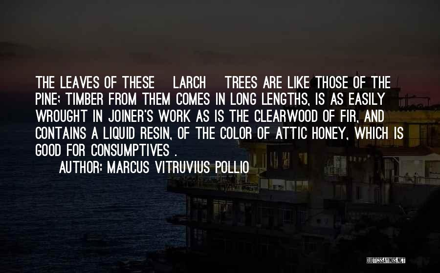 Marcus Vitruvius Pollio Quotes: The Leaves Of These [larch] Trees Are Like Those Of The Pine; Timber From Them Comes In Long Lengths, Is