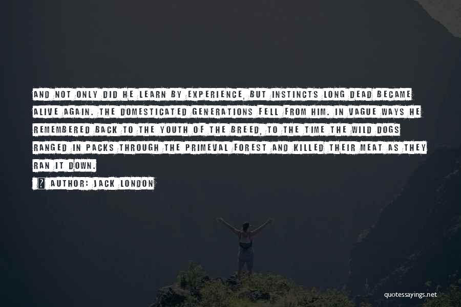 6 Packs Quotes By Jack London