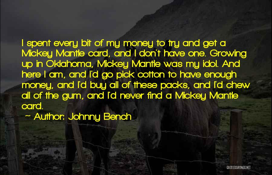 6 Packs Quotes By Johnny Bench