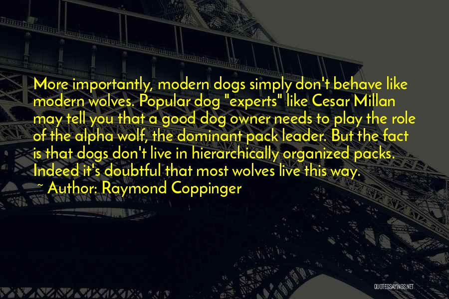6 Packs Quotes By Raymond Coppinger
