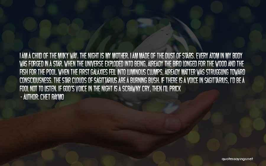 Chet Raymo Quotes: I Am A Child Of The Milky Way. The Night Is My Mother. I Am Made Of The Dust Of