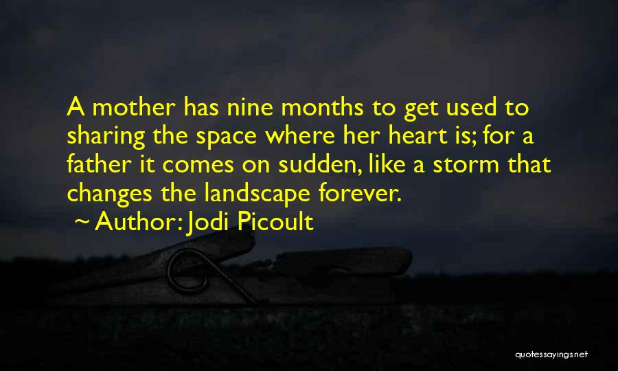 7 Months Quotes By Jodi Picoult