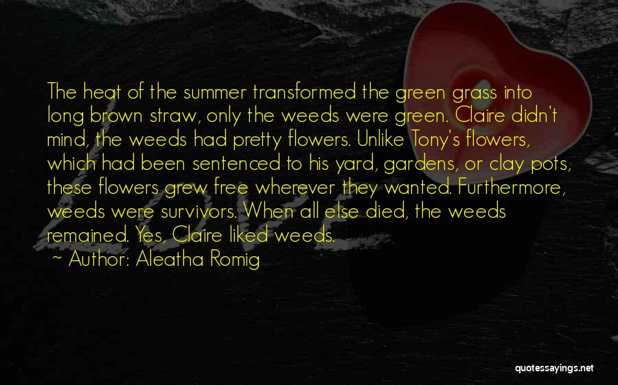 Aleatha Romig Quotes: The Heat Of The Summer Transformed The Green Grass Into Long Brown Straw, Only The Weeds Were Green. Claire Didn't