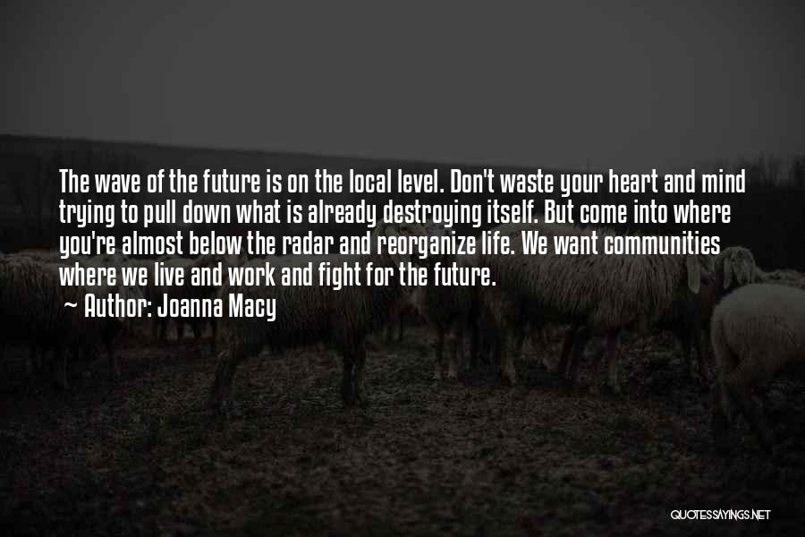 Joanna Macy Quotes: The Wave Of The Future Is On The Local Level. Don't Waste Your Heart And Mind Trying To Pull Down