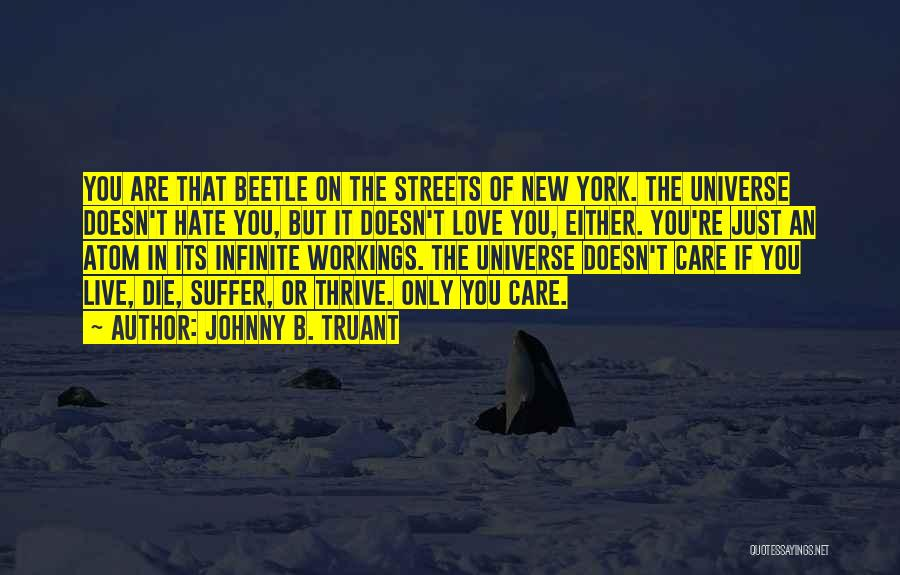 Johnny B. Truant Quotes: You Are That Beetle On The Streets Of New York. The Universe Doesn't Hate You, But It Doesn't Love You,