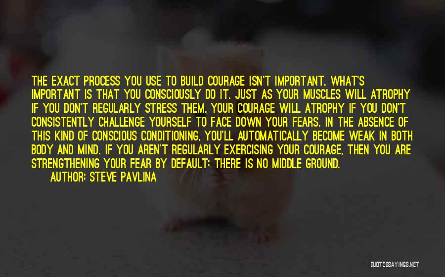Steve Pavlina Quotes: The Exact Process You Use To Build Courage Isn't Important. What's Important Is That You Consciously Do It. Just As