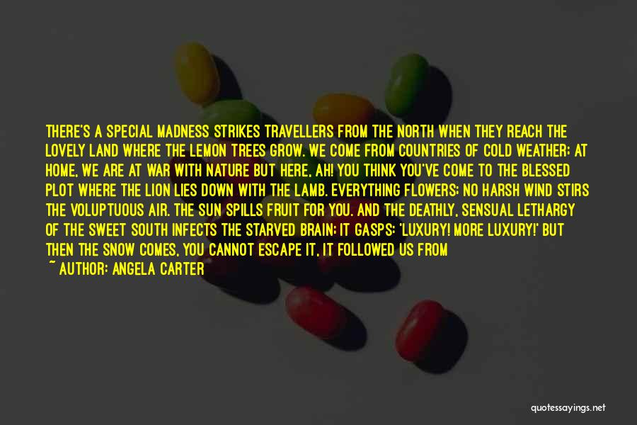 Angela Carter Quotes: There's A Special Madness Strikes Travellers From The North When They Reach The Lovely Land Where The Lemon Trees Grow.