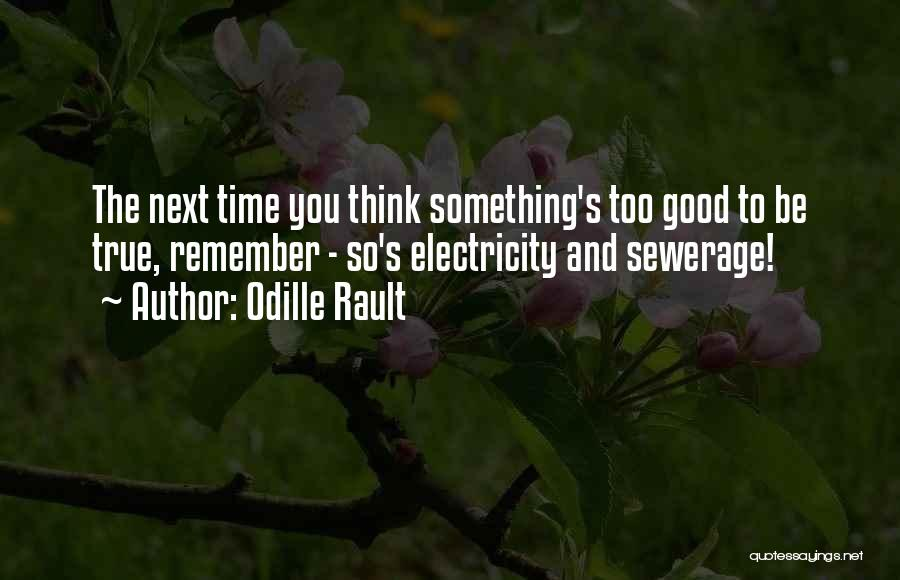Odille Rault Quotes: The Next Time You Think Something's Too Good To Be True, Remember - So's Electricity And Sewerage!