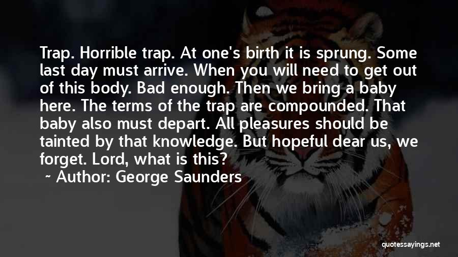 A Baby's Death Quotes By George Saunders