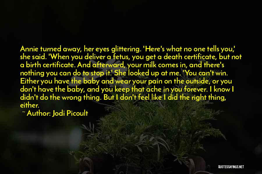 A Baby's Death Quotes By Jodi Picoult