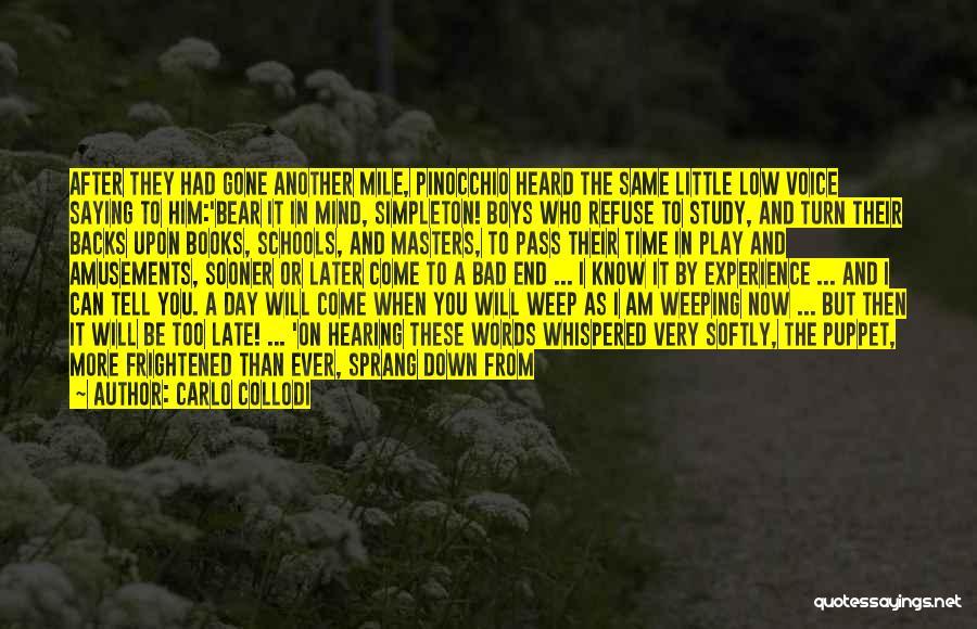A Bad Day Quotes By Carlo Collodi