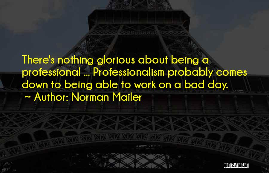A Bad Day Quotes By Norman Mailer
