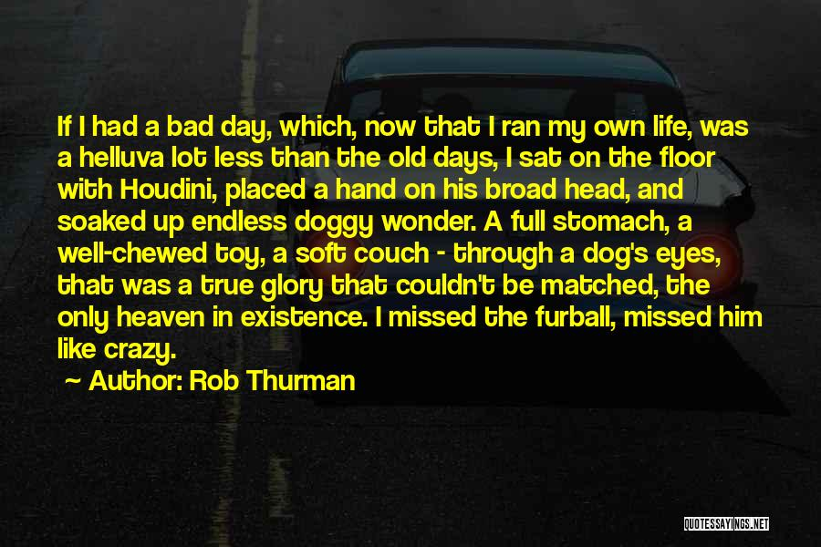A Bad Day Quotes By Rob Thurman