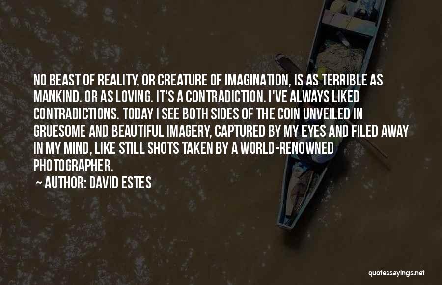A Beautiful Eyes Quotes By David Estes