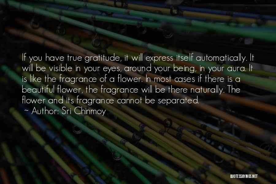 A Beautiful Eyes Quotes By Sri Chinmoy