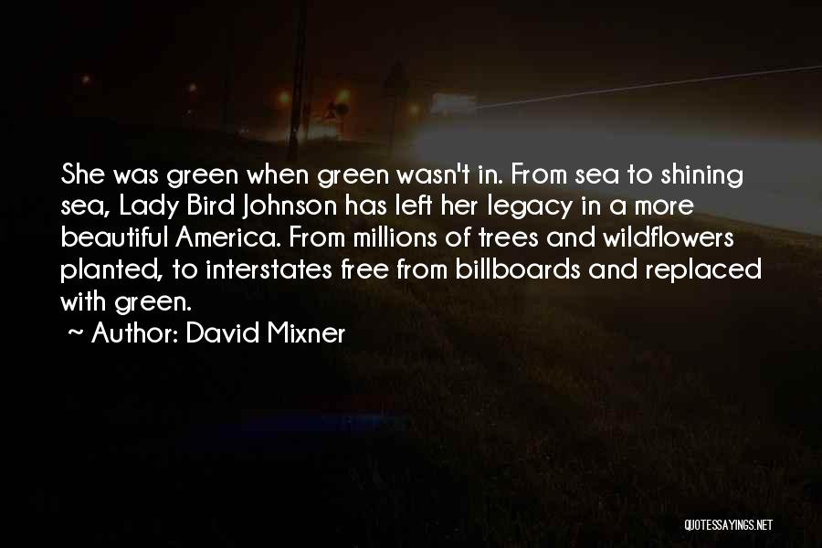 A Beautiful Lady Quotes By David Mixner