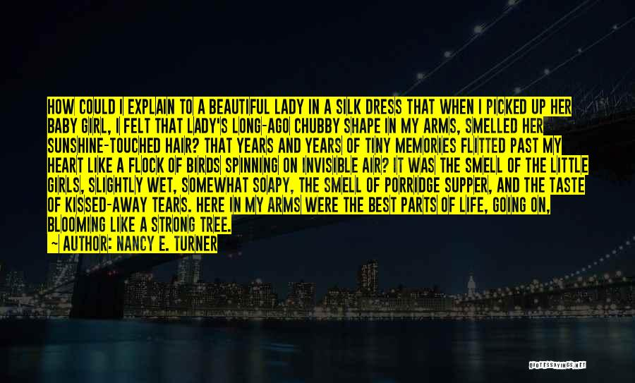 A Beautiful Lady Quotes By Nancy E. Turner
