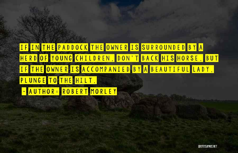 A Beautiful Lady Quotes By Robert Morley