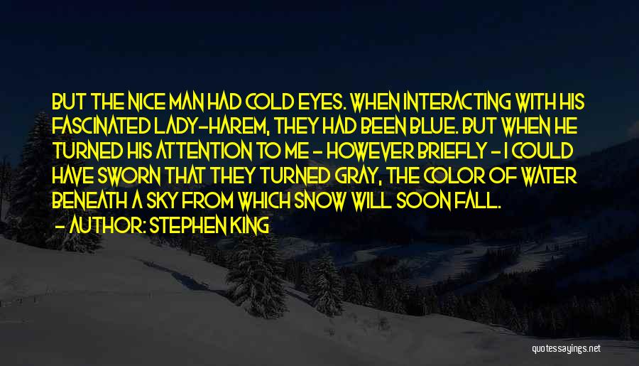 A Beautiful Lady Quotes By Stephen King