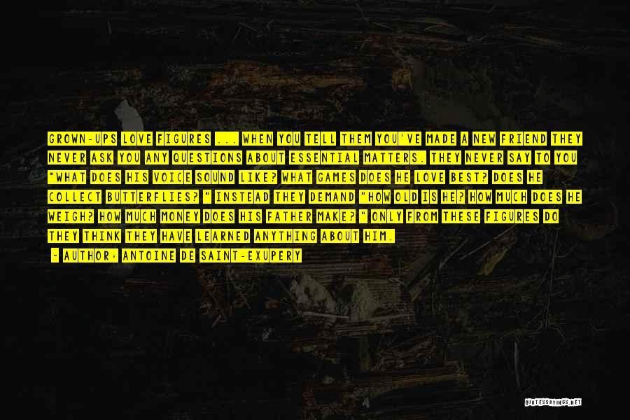 A Best Friend Like You Quotes By Antoine De Saint-Exupery