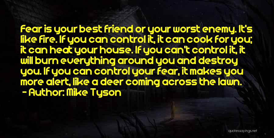 A Best Friend Like You Quotes By Mike Tyson