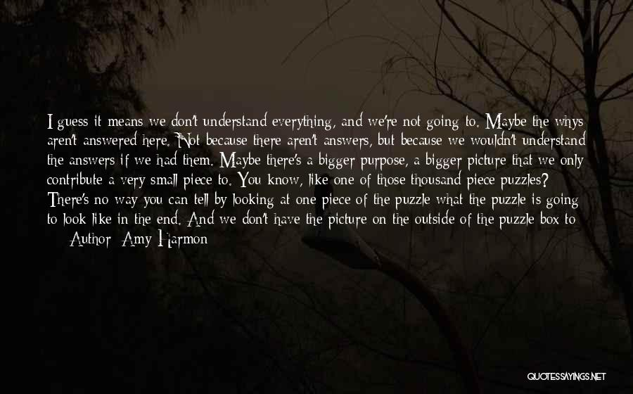 A Bigger Picture Quotes By Amy Harmon