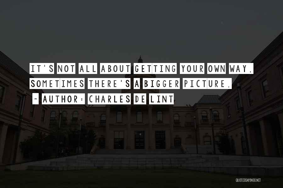 A Bigger Picture Quotes By Charles De Lint