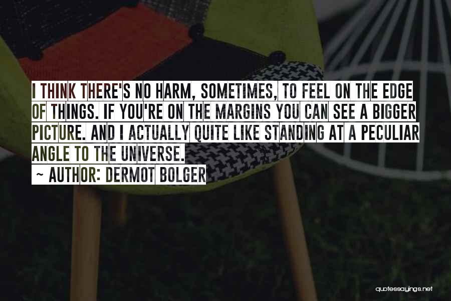 A Bigger Picture Quotes By Dermot Bolger