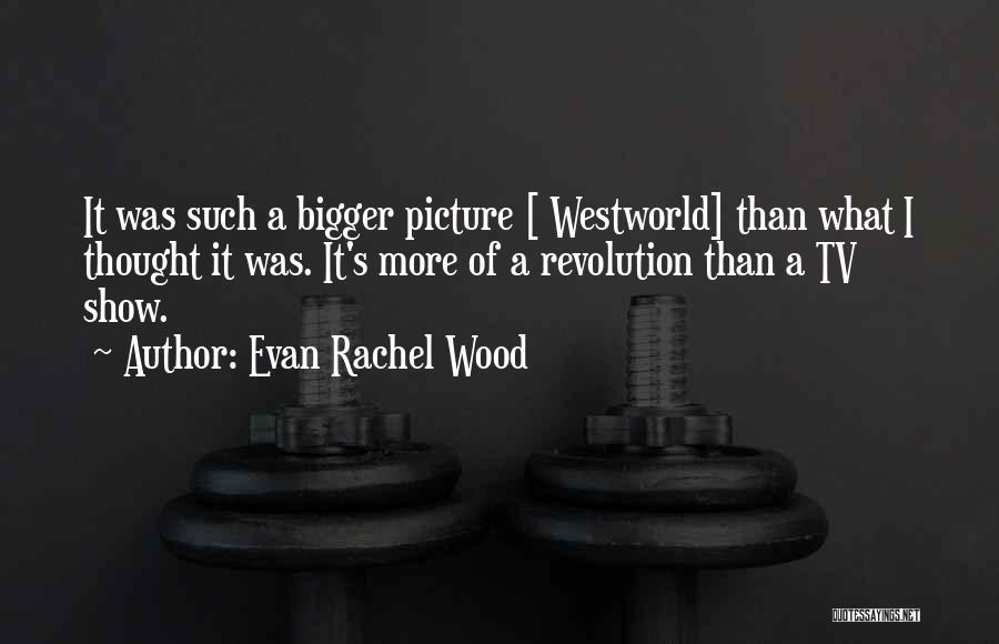 A Bigger Picture Quotes By Evan Rachel Wood