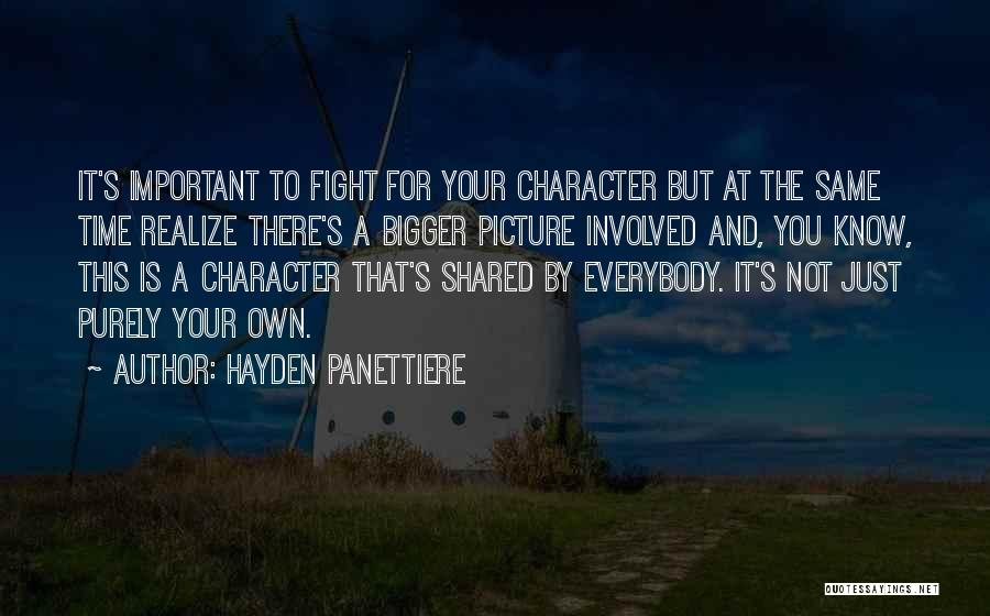 A Bigger Picture Quotes By Hayden Panettiere