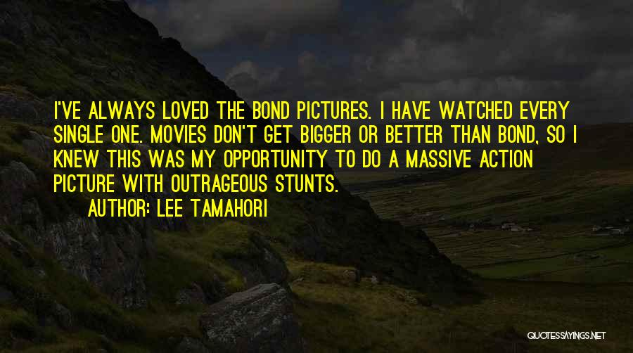 A Bigger Picture Quotes By Lee Tamahori