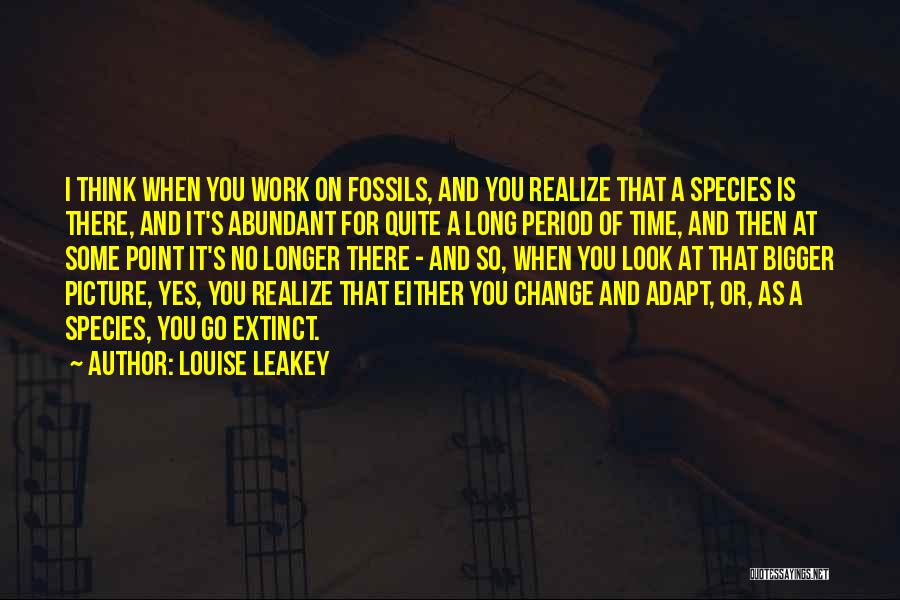 A Bigger Picture Quotes By Louise Leakey