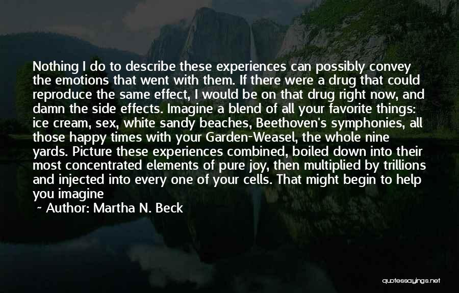 A Bigger Picture Quotes By Martha N. Beck
