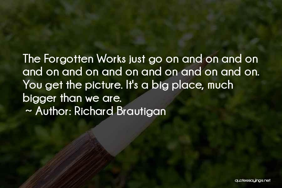 A Bigger Picture Quotes By Richard Brautigan