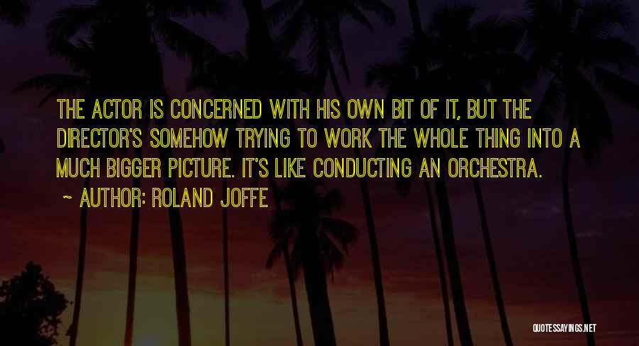 A Bigger Picture Quotes By Roland Joffe