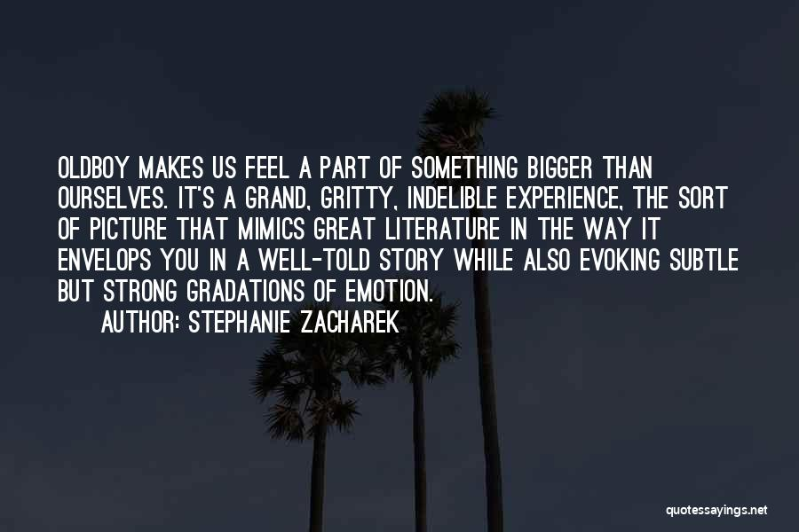 A Bigger Picture Quotes By Stephanie Zacharek